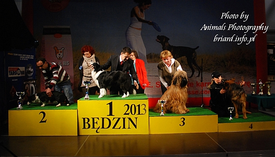 Grupa 1 - Będzin 2013