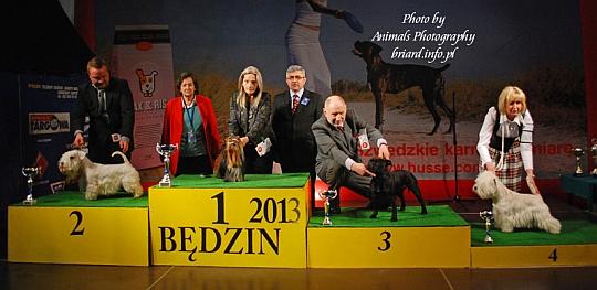 Grupa 3 - Będzin 2013