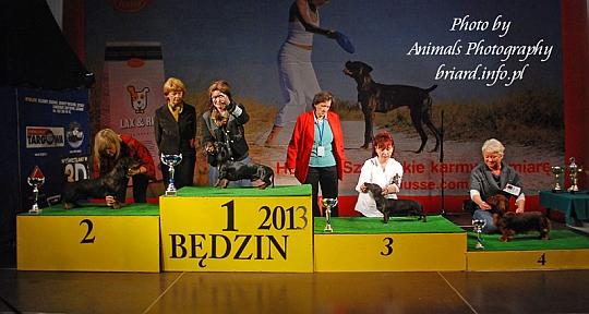 Grupa 4 - Będzin 2013