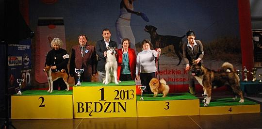 Grupa 5 - Będzin 2013