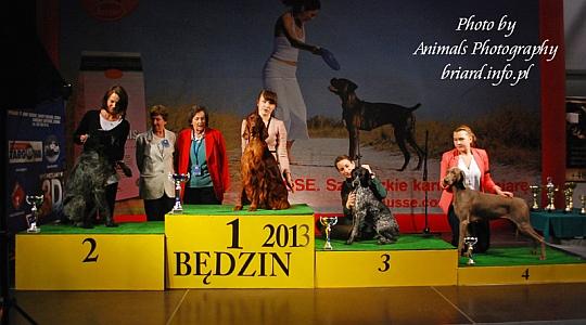 Grupa 7 - Będzin 2013