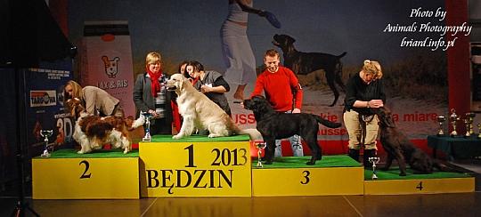 Grupa 8 - Będzin 2013