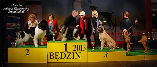 Najpiękniejszy Pies Oddziału Będzin - Będzin 2013