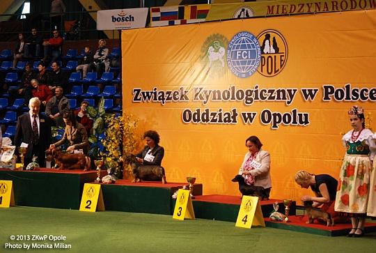 ZWYCIĘZCA GRUPY IV - Opole 2013