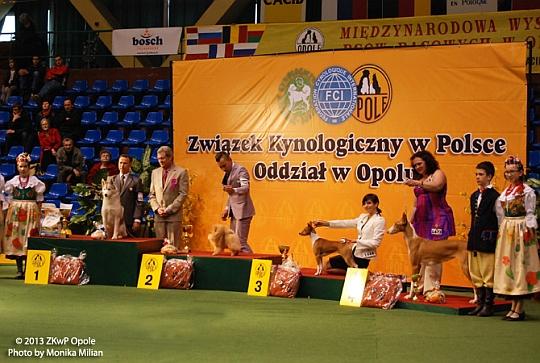 ZWYCIĘZCA GRUPY V - Opole 2013