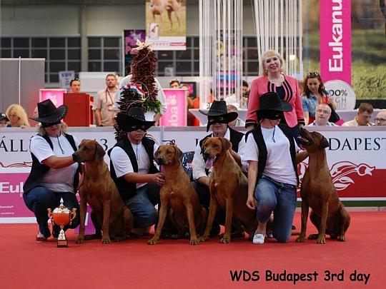 WORLD DOG SHOW - Światowa Wystawa Psów - Budapeszt 2013 - Best Progeny Group