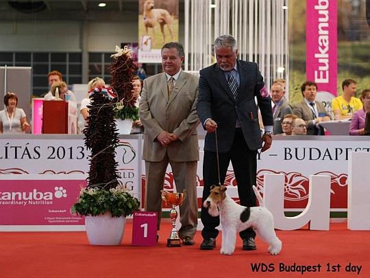 WORLD DOG SHOW - Światowa Wystawa Psów - Budapeszt 2013 - Zwycięzca grupy III