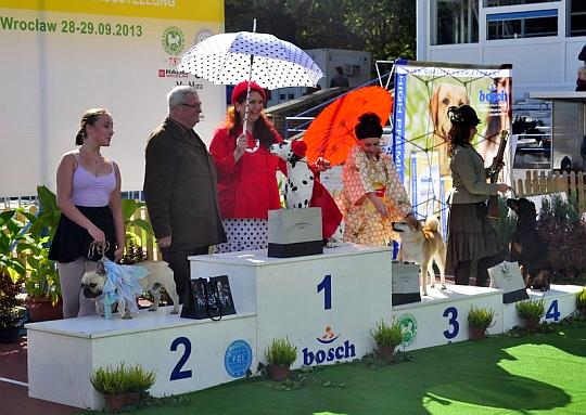 Międzynarodowa Wystawa Psów Rasowych we Wrocławiu 2013